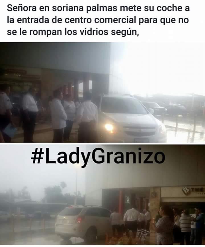 Ladygranizo