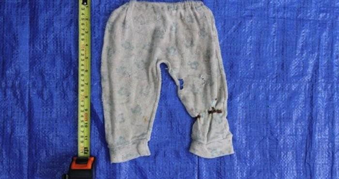 Galería. Etiquetas  desaparecidos · difunden ropa de desaparecidos ·  Fiscalía de Veracruz ... 8164a16fe438c